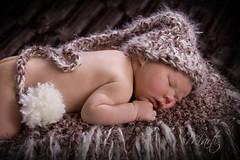 Newborn baby dreams (FLPhotonut) Tags: portrait baby infant sleep newborn homestudio babynest elfhat canon50d portraitaward flphotonut interfitex150mkii homemadeprop