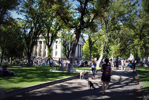 Dogtober Fest, downtown Prescott