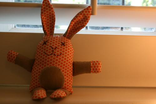 dotty bunny
