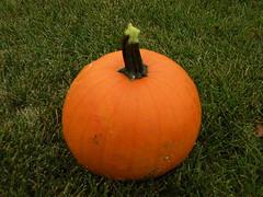 Pumpkin Pix