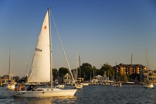 sailboat boats harbor nikon sailing maryland d200 annapolis