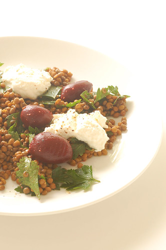 warm salad of lentils, baby beets & ricotta