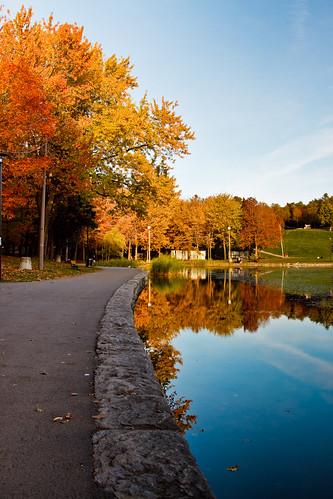 Beaver Lake Path