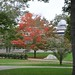 Fall foliage at Tabor