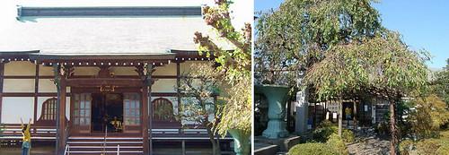 ◆ 寺 ヨガ ◆講師:ケン・ハラクマ