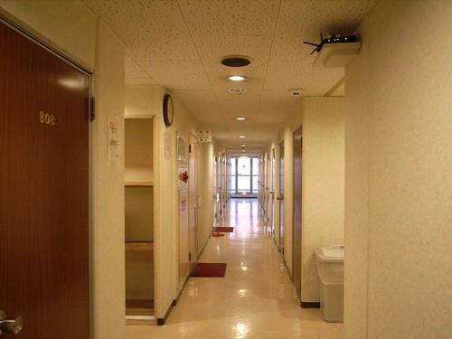 Hotel Raizan