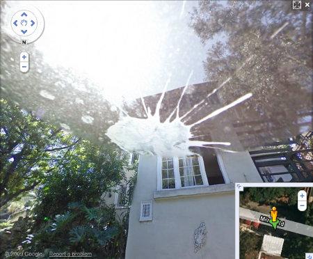 google-street-bird