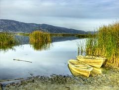 Belevi Lake (Nejdet Duzen) Tags: trip travel lake turkey boat trkiye sandal izmir reedbed gl turkei seyahat sazlk abigfave flickrdiamond vosplusbellesphotos saariysqualitypictures belevi belevigl