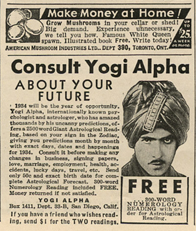 Yogi Alpha_tatteredandlost
