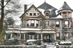 Maryland Winter 250 (johnrf21949) Tags: winter white snow blizzard