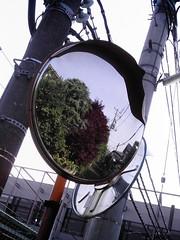 【写真】Mirror (izone 550)