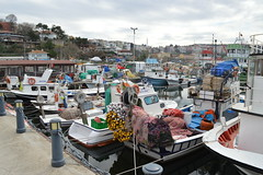 Sile line of boats (Krasivaya Liza) Tags: sea vacation fish water turkey mar seaside fishing village shoreline culture shore blacksea turkish cultural sile