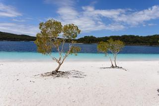 Fraser Island, Australia - Lake McKenzie