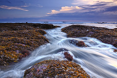 let it flow (tropicaLiving - Jessy Eykendorp) Tags: longexposure light sunset sea sky bali seascape seaweed beach nature water silhouette clouds indonesia landscape coast rocks shoreline tanahlot efs1022mmf3545usm outdoorphotography canoneos50d tropicaliving letitflow hitechfilters rawproccessedwithdigitalphotopro tiffproccessedwithadobephotoshopcs3 melastibeach