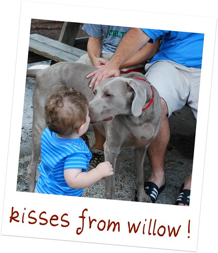 Kisses from Willow! - y3w