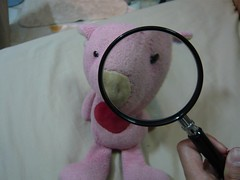 What do I do with the magnifying glass?