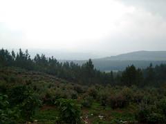 Mountains of Entoto
