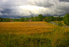 Unpredictable weather (Per Ola Wiberg ~ Powi) Tags: nature beautiful niceshot ngc september loveit fourseasons harmony 2009 breathtaking fairplay musictomyeyes moln favoritephotos awesomeshot finegold cherryontop thegalaxy beautifulphoto lov addictedtoflickr absolutelybeautiful magicofnature beautifulcapture withsky abigfave flickrgoldaward impressedbeauty flickrhearts mlararna flickrbronzeaward flickrsilveraward heartawards exemplaryshotsflickrsbest platinumheartaward flickrsheaven wonderfulworldmix betterthangood theperfectphotographer goldstaraward highqualityimages travelpilgrims ilovemypics explorewinnersoftheworld damniwishidtakenthat thebestofnature naturestreasures artofimages thebestofmimamorsgroups amazingnaturephotos zensationalworld addictedtonature visionaryartsgallery qualitysurroundings universeofnature bestcapturesaoi ~exclusivity~ creativephotographeronflickr adrinnesmagicalmoments naturescarousel livinglifebehindthelens extraordinaryvsimpressive visionaryartsgalleryplatinumgold naturesanctuary theearthplanet aboutthenaturewithlove chariotsofartists hellofriend mysoulmyheartmyart majesticphotography chariotsofartistslevel2 chariotsofartistslevel3 anewartphotogallery