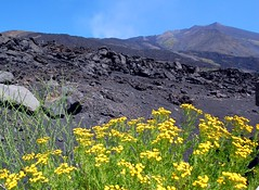 Mount Etna in Sicily, Italy (Tobi_2008) Tags: italien italy berg volcano italia searchthebest mount sicily tobi etna soe sicilia vulkan sizilien supershot golddragon abigfave ätna anawesomeshot theunforgettablepictures