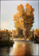 Grand Teton National Park (Dignan66) Tags: park fall grand national teton