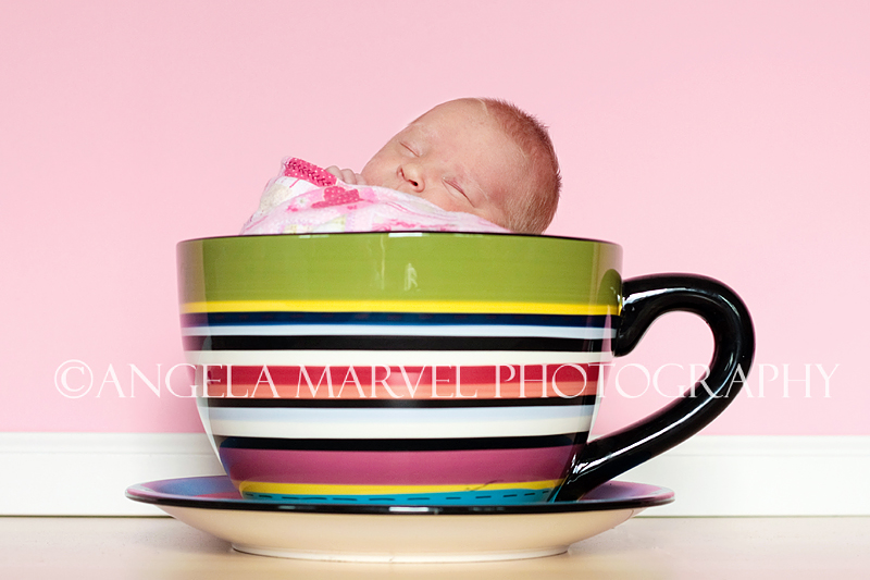 I'm [in] a little teacup :)