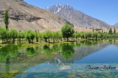 Beautiful Pond in Langar Gilgit (Qasim Jadoon) Tags: pakistan reflection water nikon areas northern gilgit mansoor qasim langar jadoon d5000 gupis