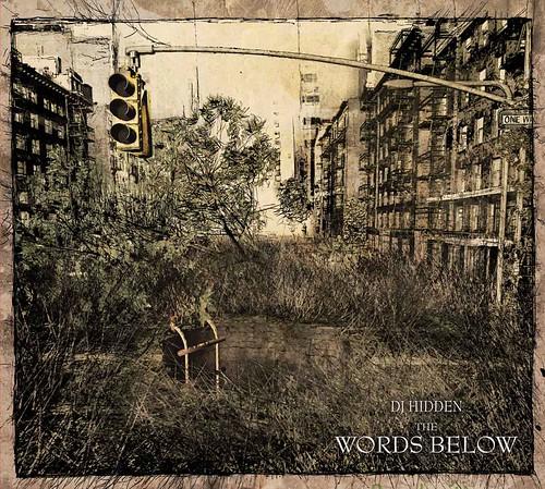(IDM, Darkstep) (Ad Noiseam [ADN118]) DJ Hidden - The Words Below - 2009, FLAC (tracks+.cue), lossless