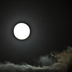 1003 - full moon