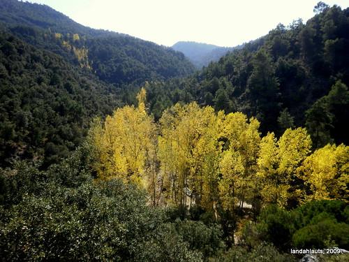 Cañada del Sereno