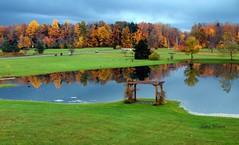 Morning Calm (kweaver2) Tags: morning autumn trees color fall nature water landscape photography pond pennsylvania olympus calm arbor kathy erie weaver e520 kweaver2 kathyweaver