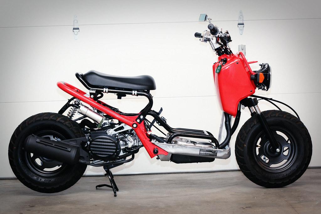 50 cc Ruckus | Adventure Rider