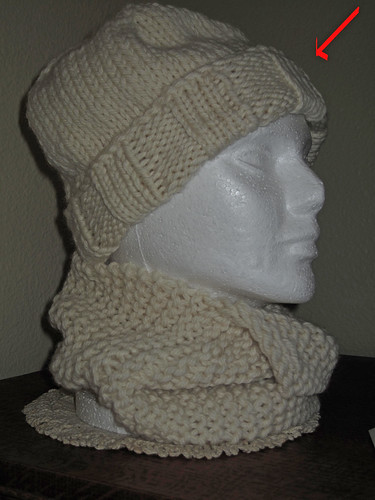 20091112 Brangelina Hat
