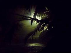 Tabacon Hot Springs at night