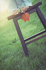 -autumn is leaving us- (-jaybirdie-) Tags: light texture feet grass bench leaf toes explore stool warmlight explored