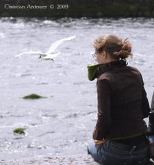 ... feeding seagulls by River Corrib ... (ChristianofDenmark) Tags: ireland galway water flying seagull 2009 rivercorrib underthebigsky irelandinmyheart artofimages vigilantphotographersunite vpu2 vpu3 vpu4 vpu5 vpu6 vpu7 vpu8 vpu9
