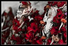 Sri Ganeshaya Namah (Vishnu Sahoo) Tags: canon ganesha vishnu dof god divine ganesh idol elephantgod kolkata mystic vinayaka kws hindutemple diety lordganesh hindugod ganapathi sahoo 450d