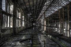 Hal (Cirduow) Tags: wood old urban water station train hall drops essen factory belgium railway impact raindrops hal reflexion urbex roosendaal trainhouse reflectie eploration