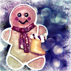 December 10th 2009 (Raynah Thomas) Tags: christmas frost bokeh gingerbread picnik wonter hpad lumpygolightly hpad101209 thisisnotanediblegingerbreadmanifitisitwouldnotbewholeitsanearring