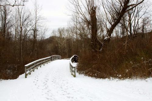 Photowalk 52 - Snowy Bridge