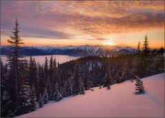 Hurricane Ridge Sunset (Chip Phillips) Tags: sunset snow landscape photography washington state pacific northwest hurricane phillips ridge chip snowshoeing