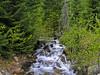Babbling Brook (Trystian Sky) Tags: outdoors woods stream olympus brook c4040 cleelumlake c4040z olympus4040z 4040z olympus4040zoom