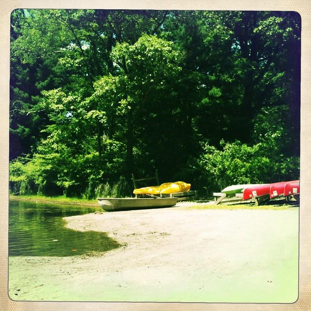 Panther Lake