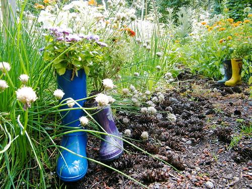 Milner Gardens & Woodland