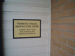 Termite Visual Inspection Zone
