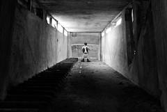 (Riccaro) Tags: windows light people bw man black stairs blackwhite nikon place tunnel romeo copy atwork riccardo preghiera montecatini castelfiorentino contemplazione dalbasso solitaryman inginocchio d80 riccaro ste71 ononesknees pscbn2dsc8138