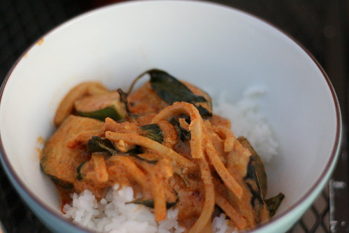 Red Curry with Thai Eggplants and Bamboo Shoots