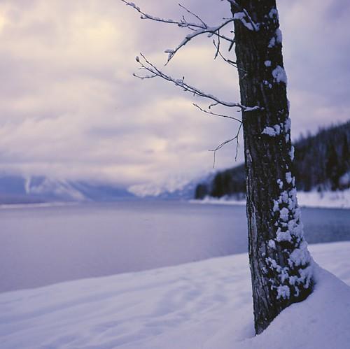 Dawn at Glacier National Park 2