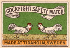 safetymatch059