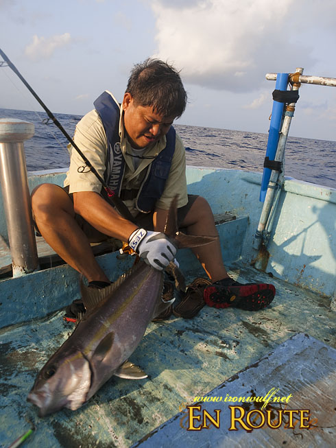 Batanes Fishing Amberjack catch