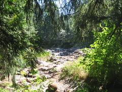Moulton Falls 010 (arielrivers) Tags: moulton moultonfalls